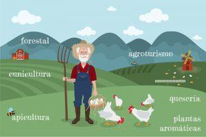 7 maneras de recuperar el medio rural y zonas de interior mediante cooperativas de trabajo